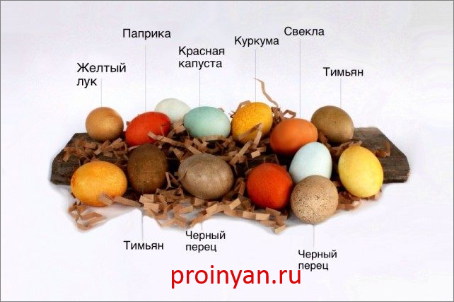 красим яйца паприкой фото